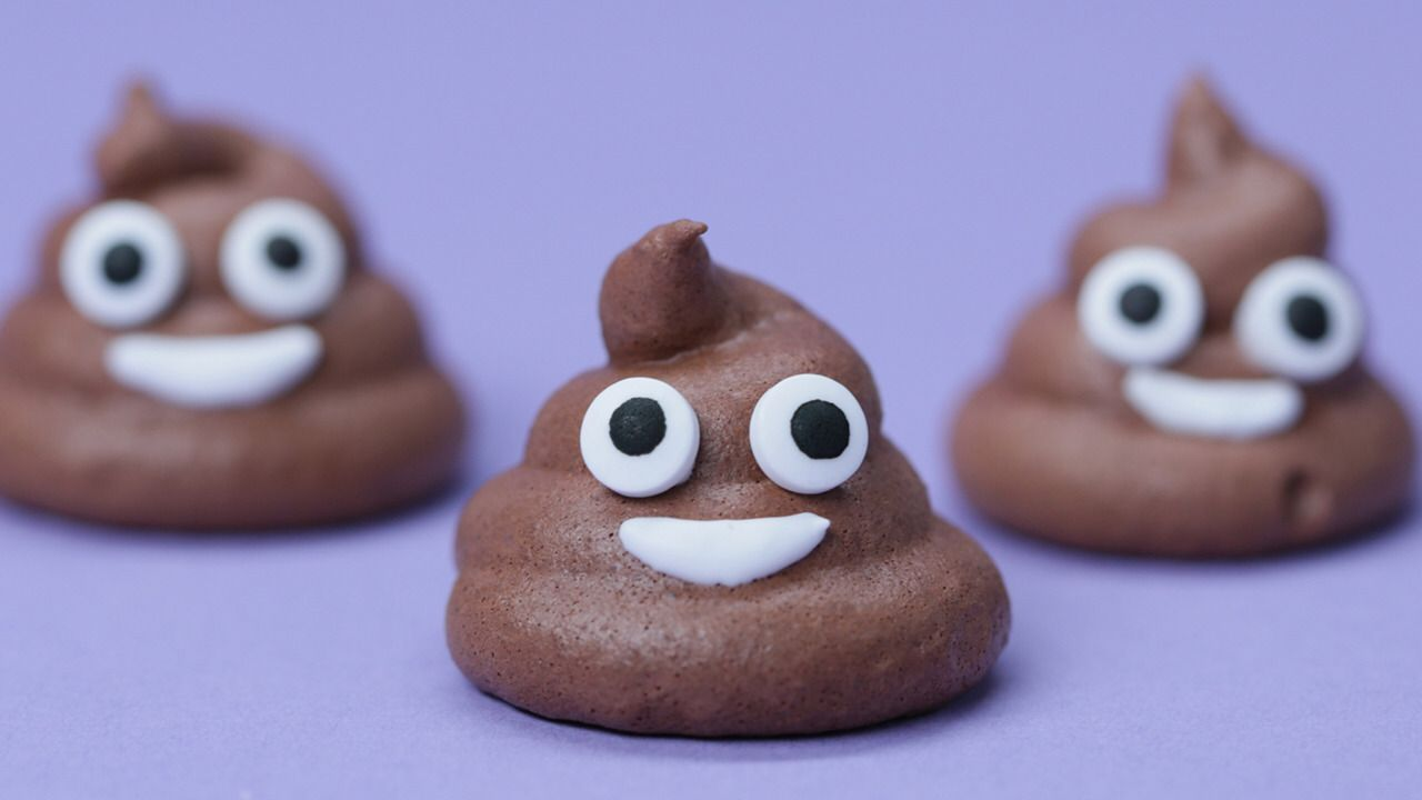 14 Things You Didn't Know About Poop